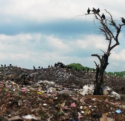 Свалка в Никарагуа. Как найти украденные документы
