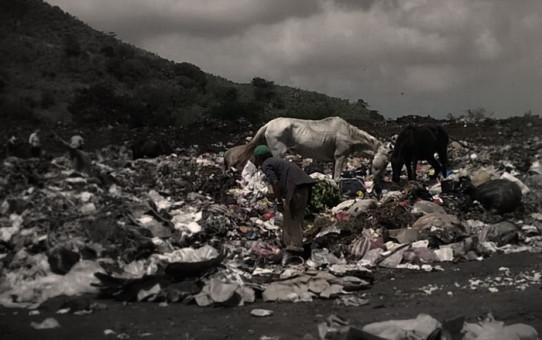 мусор. интересные факты о мусоре. правила на каждый день. экологичная жизнь каждый день