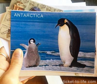 Открытки из путешествияю открытка из Антарктиды